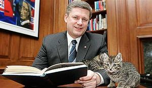 Needs more kittehs to improve political image.