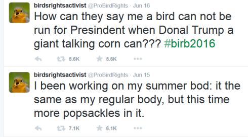 birdsrightsactivism