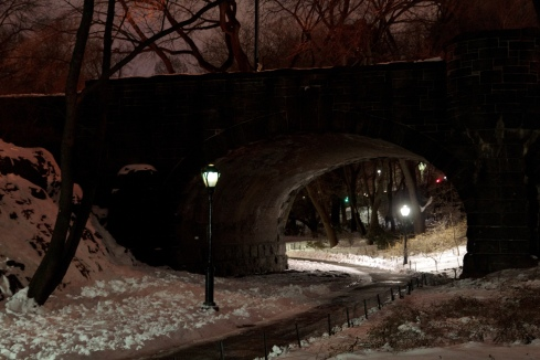 Footbridge in Central Park at night