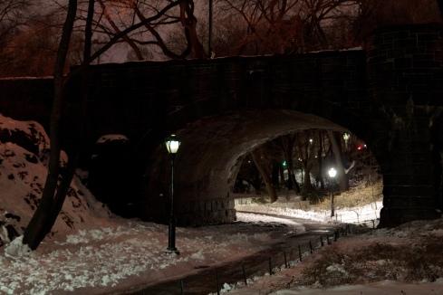 Footbridge in Central Park at night