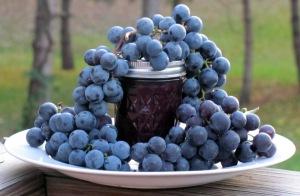 grapejelly