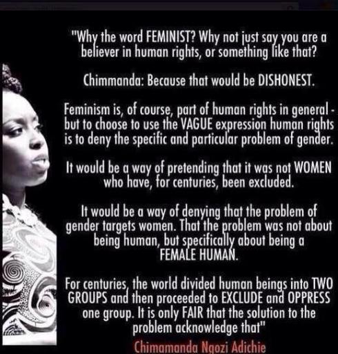 Chimamanda Ngozi Adichie Quotes Stunning The DWR Feminist Quote Of The Day Chimamanda Ngozi Adichie Dead